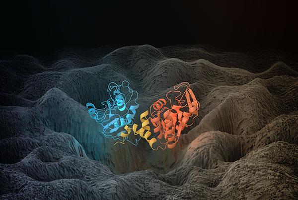 Single Molecule Dynamics